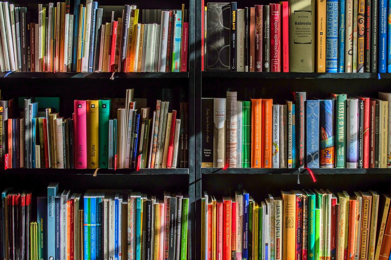 books-1204029_1280